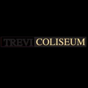 trevi coliseum logo ottica rizzieri trasparente